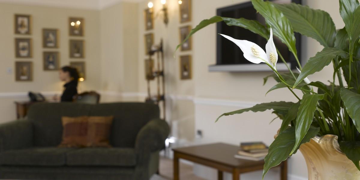 Luxury Suite - Speakers Suite